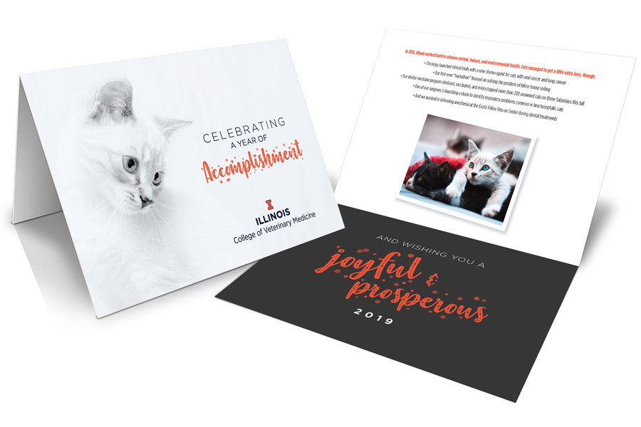 Veterinary Medicine Holiday Cards