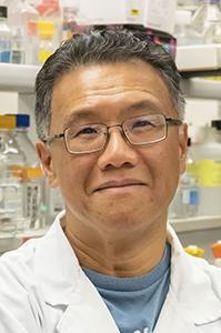 Dr. Lau