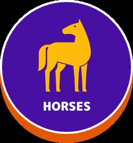 Horses - button
