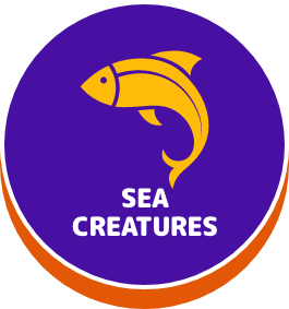 Sea Creatures - button
