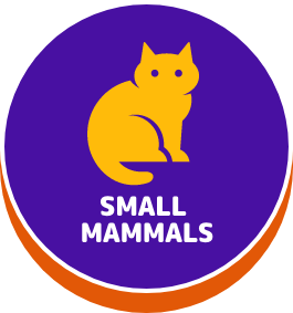 Small Mammals-button