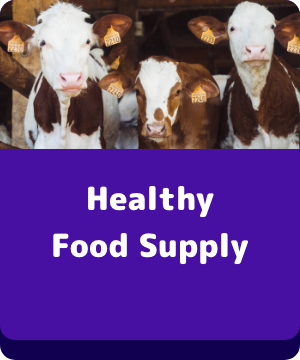 Healthy Food Supply - button