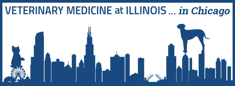 Veterinary Medicine at Illinois ... in Chicago