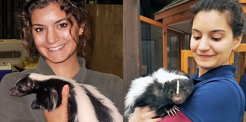 [Dr. Ana Cruz with Tank the skunk]