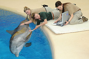 [Dr. Jen Langan with dolphin]