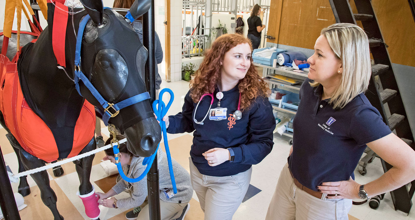[Dr. Lori Madsen works with veterinary students in the Clinical Skills Learning Center at Illinois]