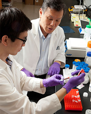[faculty member oversees graduate student working in lab]