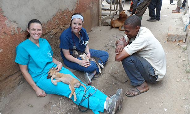 [students, canine patients, owners in Tanzania]