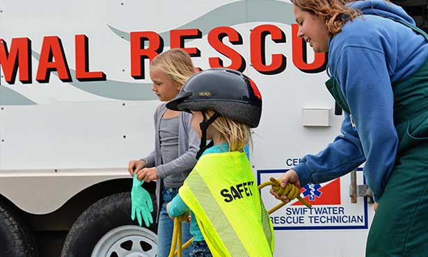 [large animal rescue practice]