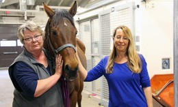 Pamela Wilkins and Maureen McMichael with a horse, blood clotting researchers