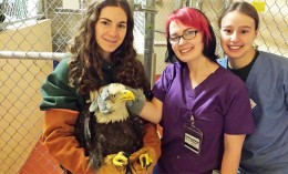 [three veterinary students with an eagle]