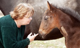 [Dr. Pamela Wilkins with a foal]
