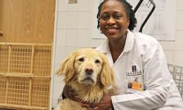 [Dr. Tisha Harper and a golden retriever]