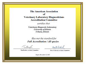 [Accreditation certificate]