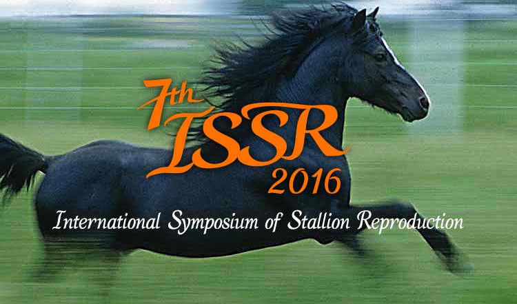ISSR Stallion Web Header