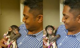 Dr. Perushan with baby baboon