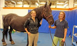 [Xena with Dr. Erica Secor and veterinary student Nicole Thomas]