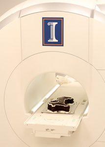 [cake in MRI]