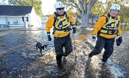 [FEMA workers rescue a dog from a flooded neighborhood]