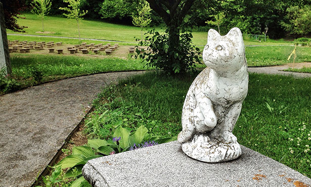 [cat statue in pet cemetery]