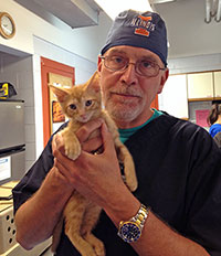 Dr. Bob Weedon with kitten