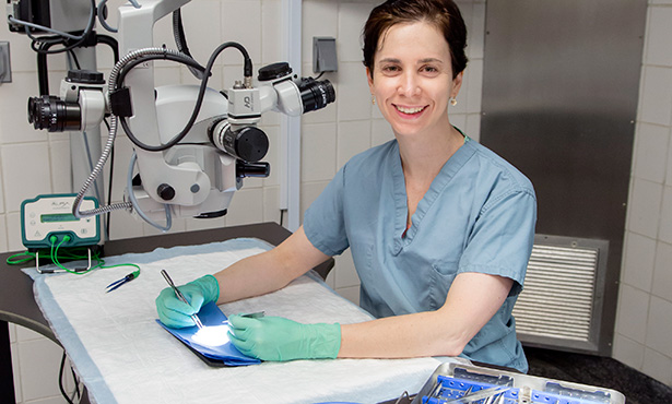 [Dr. Heidi Phillips, veterinary microsurgeon]