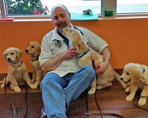 [Dr. Paul Davis with golden retreiver puppies]