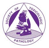 Society of Toxicology Pathology