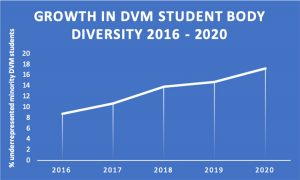 [graph of diversity in student body]