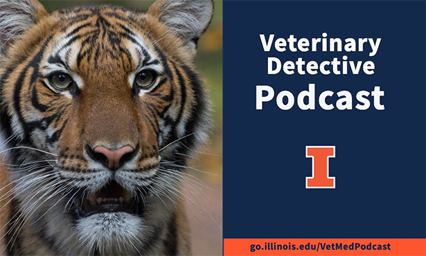 [tiger-podcast series]