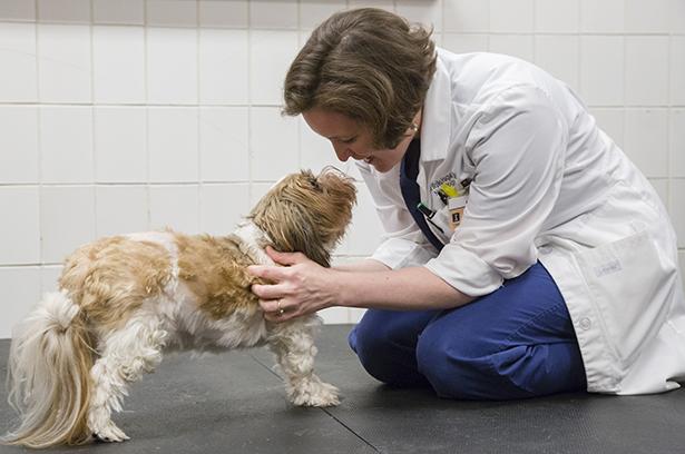 Dr. Hague with neurology patient