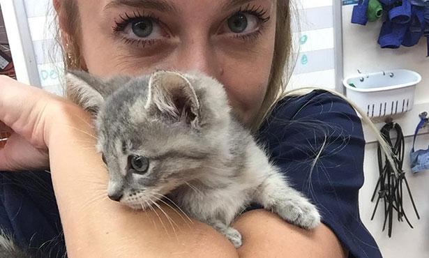 [Jen Tito with kitten]