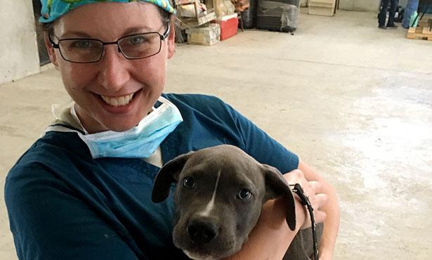Dr. Erin Stein with dog
