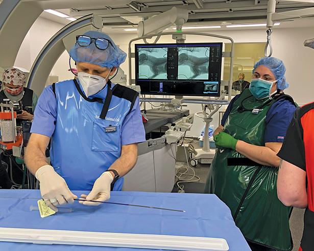 Drs. Gal and Reinhart in IRsuite