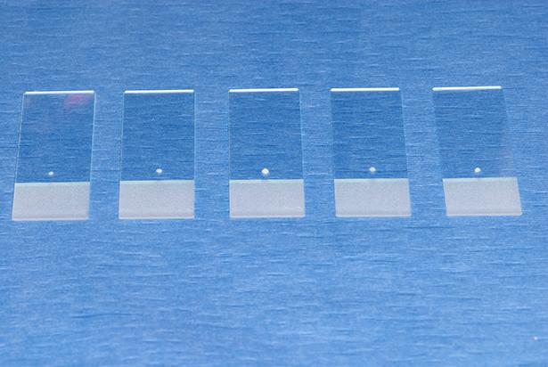 Cytology Slides